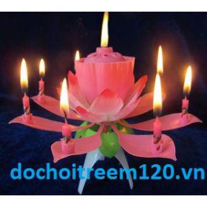 Nến nở hoa sen 1 tầng có nhạc trang trí sinh nhật