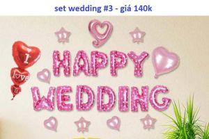 Set wedding #3 bong bóng kiếng trang trí 22 món