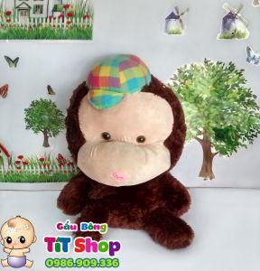 Khỉ đội nón