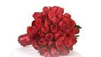 Hoa cưới 8