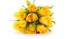 Hoa cưới 9