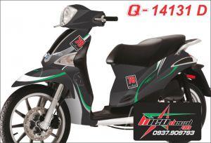 Q 14131 D